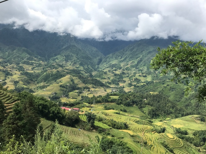 Trekking with the Hmong (and a tiny motorbike)