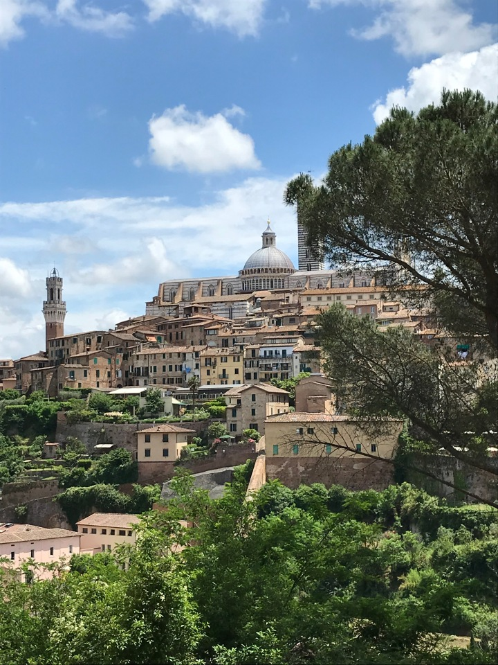 Siena the Magnificent